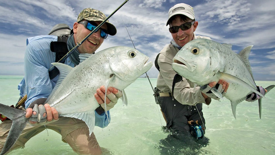 Cosmoledo giant trevally