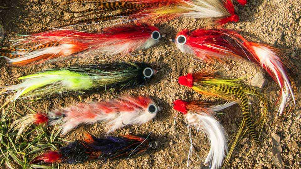 Flies for monster Nile perch