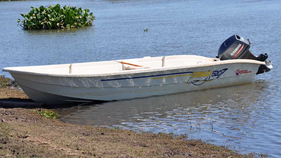 Golden dorado fishing boat