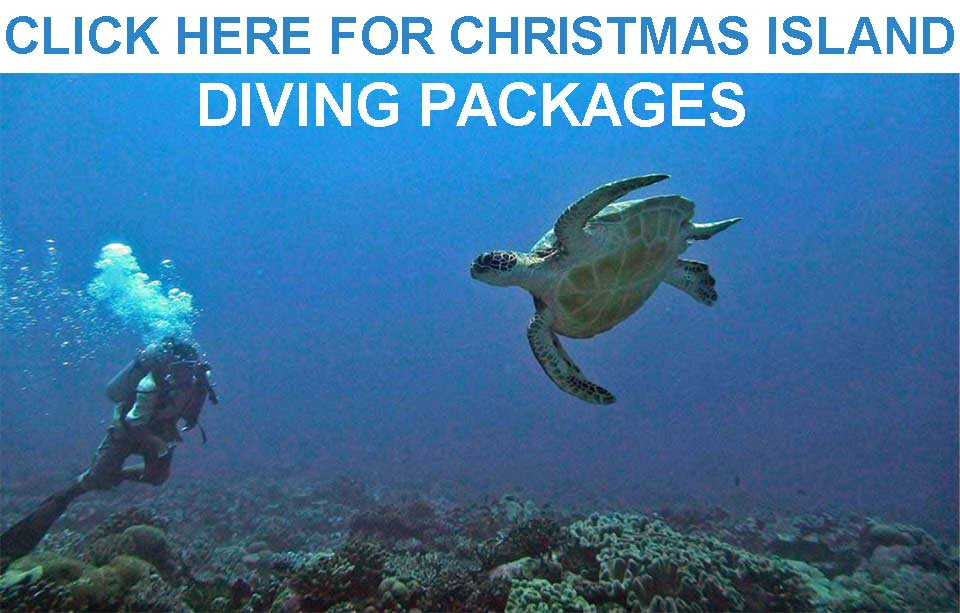 Christmas Island Dive Packages