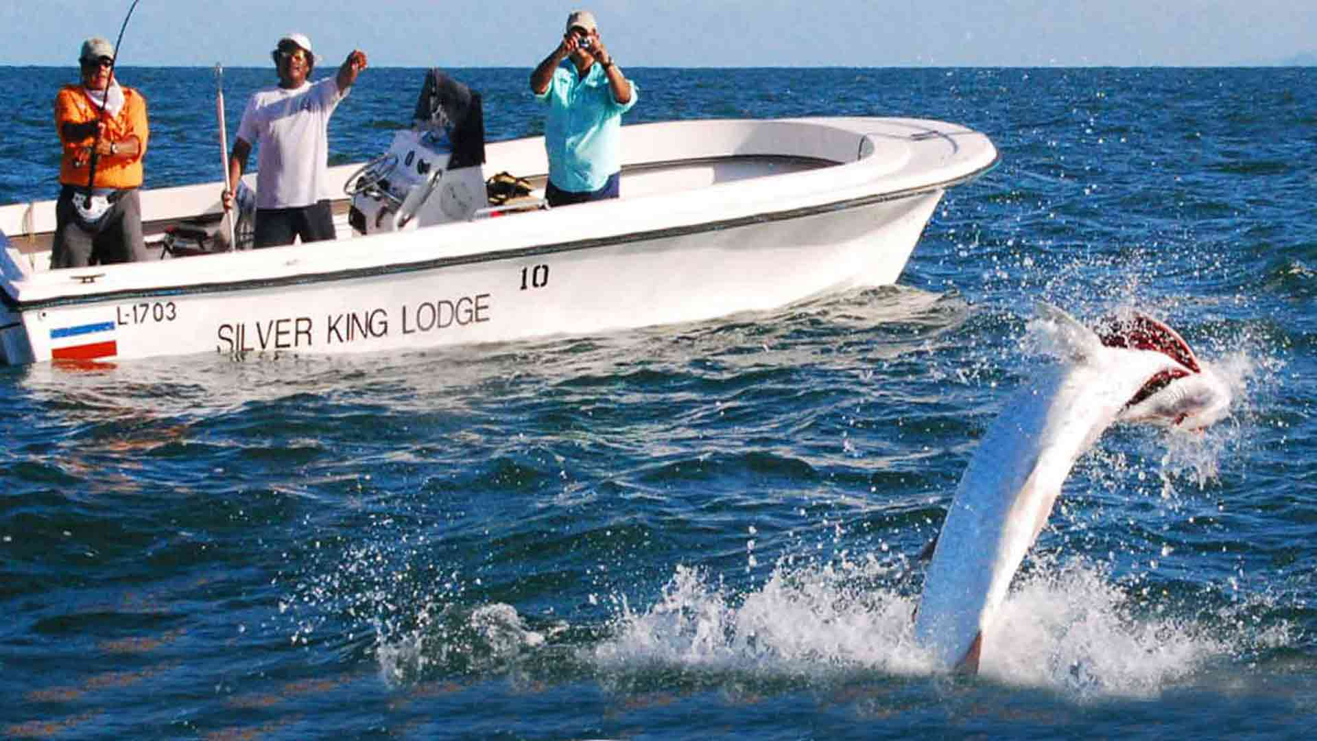 Silver King Lodge Tarpon fishing