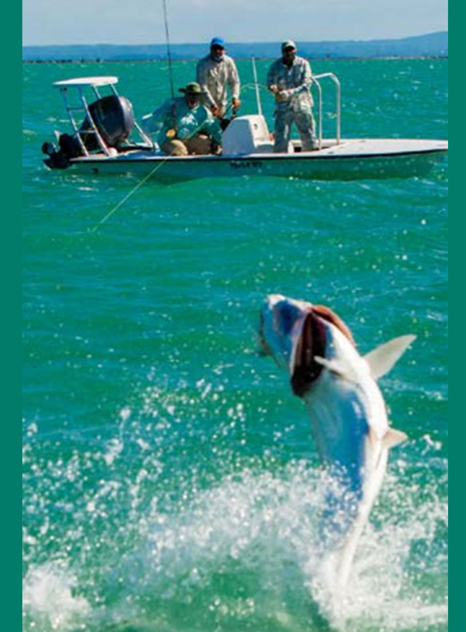 Tarpon Fishing Paradise