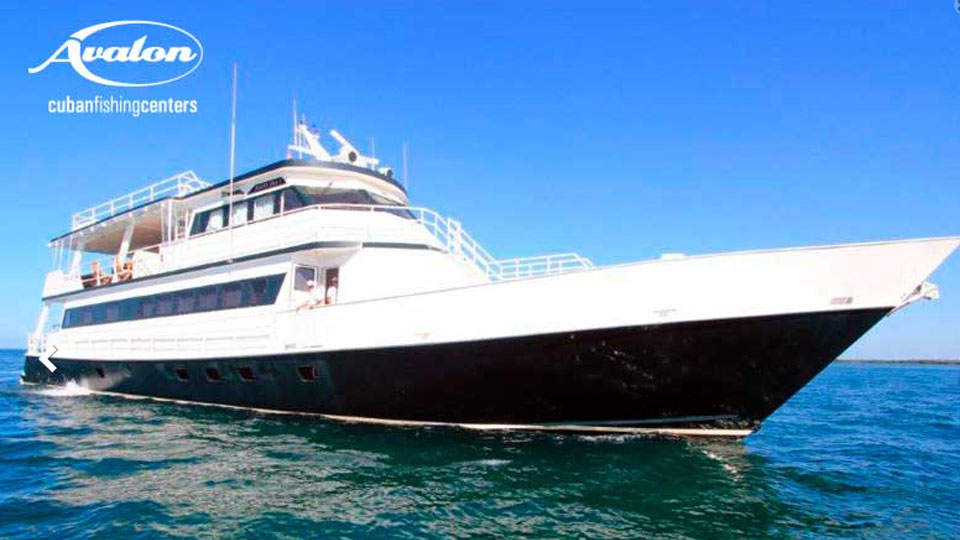 The Perola Liveaboard