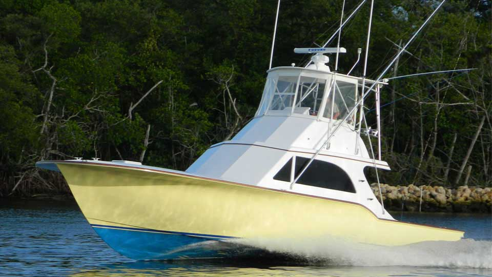 Sailfish Oasis Allure II