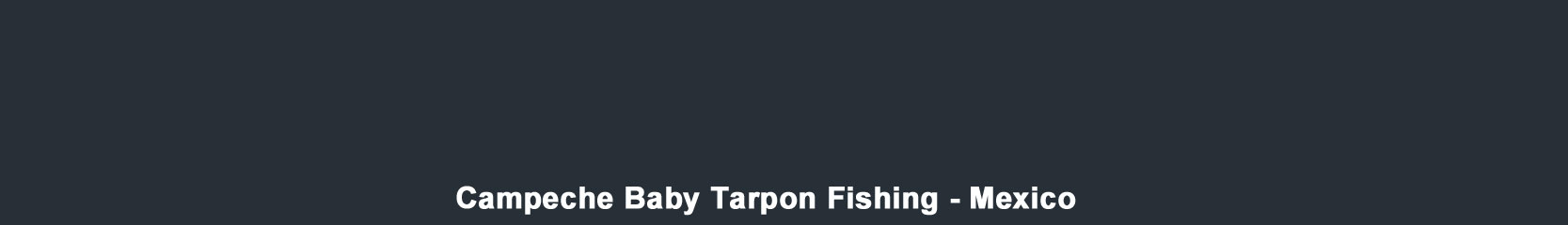 Baby Tarpon Fishing