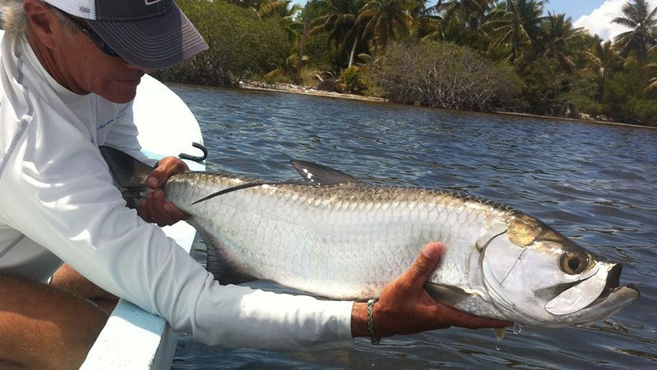 Grand Slam baby tarpon fishing