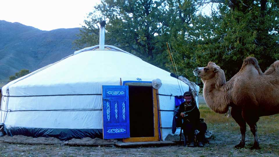 Ger and camel at camp