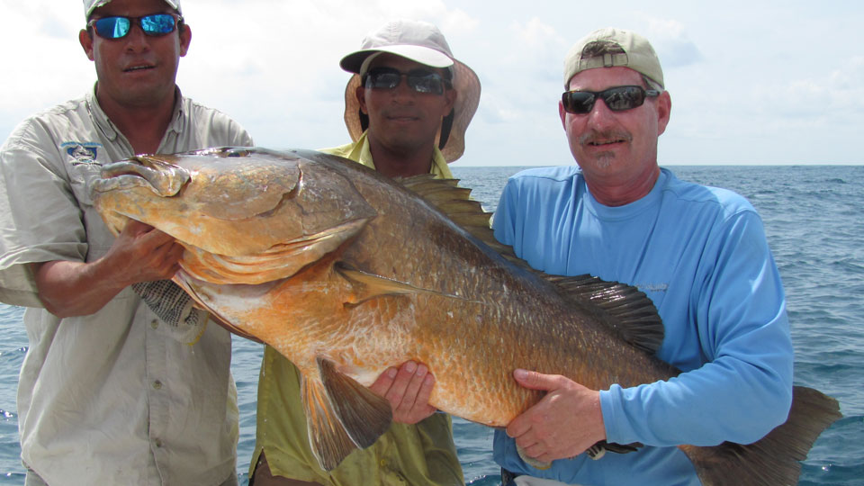 Cubera Snapper Fishing