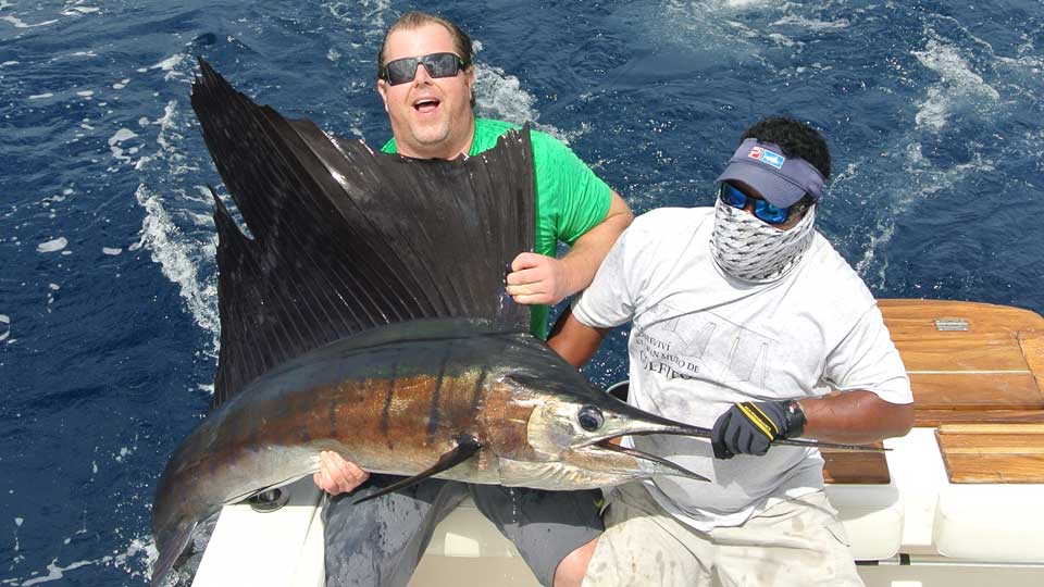 Panama Sailfish